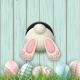 Ostern 8 (DE)